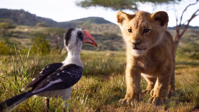 the-lion-king-remake-animals-ranked-gq.jpg